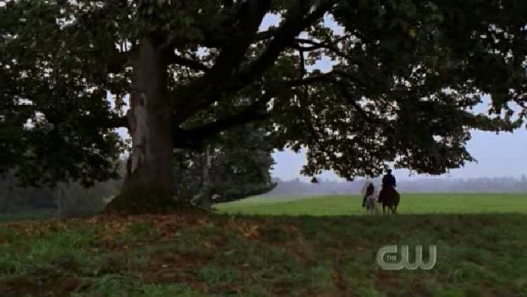 SMALLVILLE 7x07 WRATH